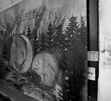 Yukon Sportsman's Paradise billboard, Wolverine 2, Picton, NSW by Ian Ramsay