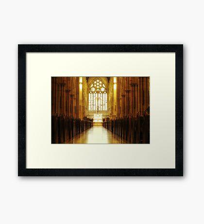 ~ opulent ~ Framed Print
