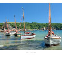 Salcombe by Andrew Roland