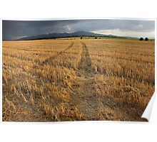 Dry Field Road in The Countryside Poster