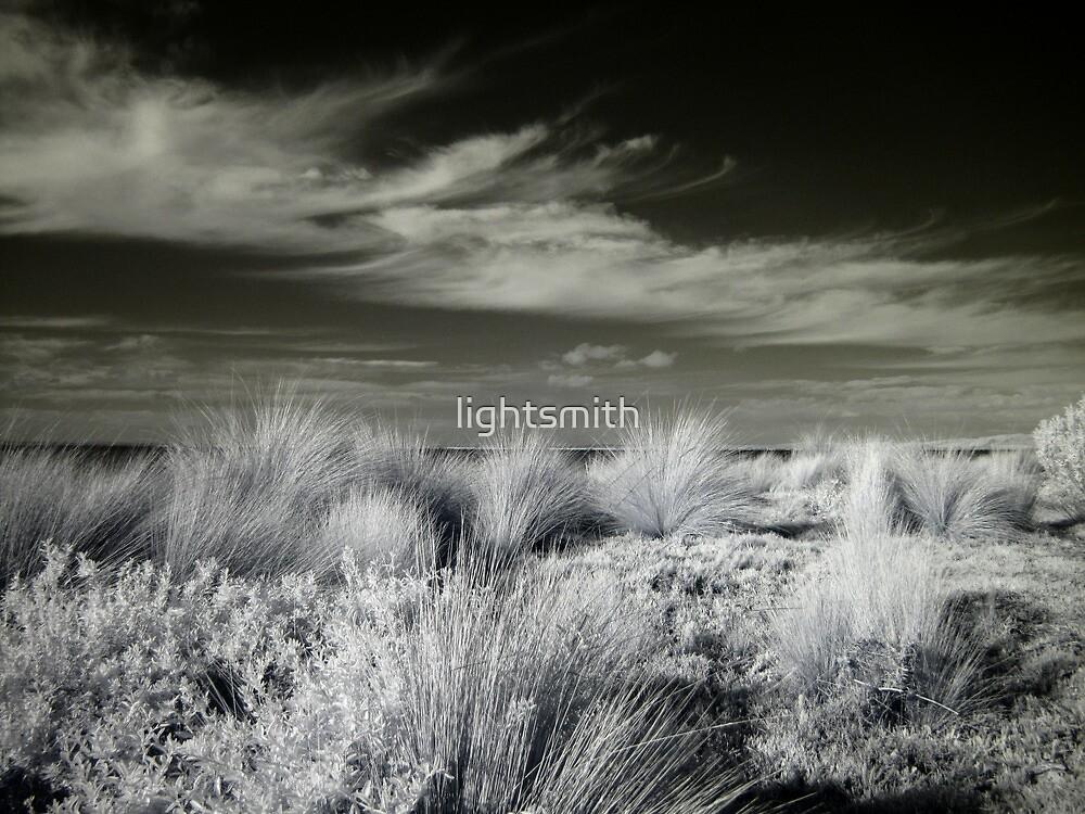 Phillip Island - Coastal Grass Wild by lightsmith