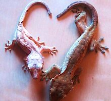 Gecko Heart by ady-182
