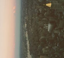 NYC from Empire State Building by buselikmakami