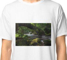 Spring flood Classic T-Shirt