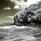 Phillip Island - Alien Beach by lightsmith