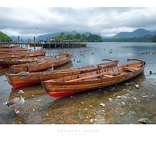 Derwent Water by Andrew Roland