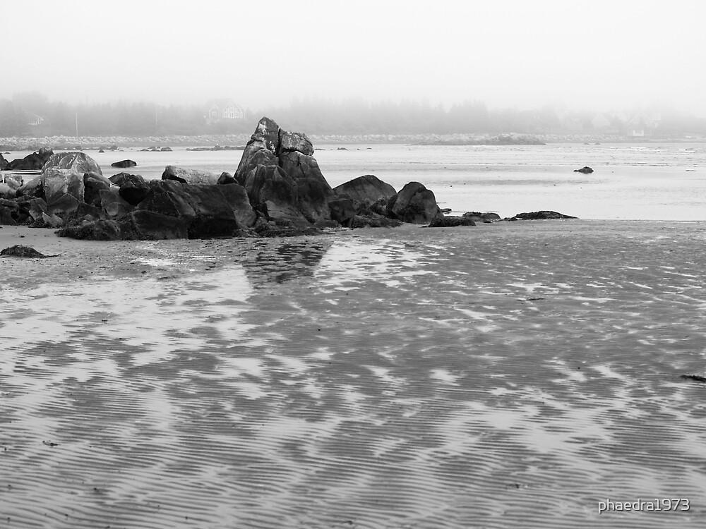Foggy Shore by phaedra1973