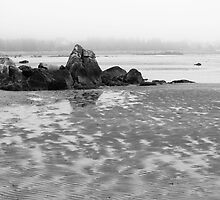 Foggy Shore by phaedra1973