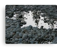 Monochrome Reflections Canvas Print