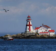 East Quoddy Head Lighthouse by Lori Deiter