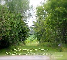 Nature  by DreamCatcher/ Kyrah Barbette L Hale