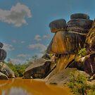 Mickey Mouse Rocks by Michael Matthews