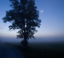 Moonlit dawn by Ian Middleton
