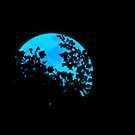 Blue MoonTree by Alex Call