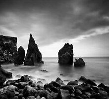 Iceland: Reykjanes by Nina Papiorek
