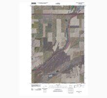 USGS Topo Map Washington State WA Ritzville SW 20110401 TM Baby Tee
