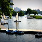 Charles River, Harbor, Boston by Amanda Vontobel Photography