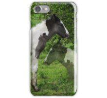 Reflection iPhone/iPod Case iPhone Case/Skin