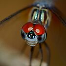 Red Eye by starwarsguy