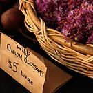 Wild Onions by ZWC Photography