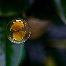 Bubble #1 by starwarsguy