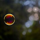 Bubble #2 by starwarsguy