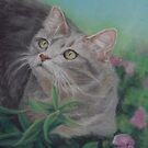 Gray Cat in a Flower Bed by Pam Humbargar