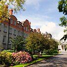 Trinity College by Béla Török