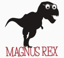 Magnus Rex (TDKR Working Title) by BadReplicant
