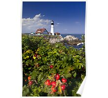 Portland Head Light and Rose Hips Poster