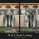 Endangered Elephants of Chedi Luang by KelseyGallery