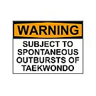 WARNING: SUBJECT TO SPONTANEOUS OUTBURSTS OF TAEKWONDO by Bundjum