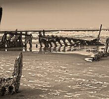 Wreck of the SS Dicky Sunshine Coast Queensland Australia by PhotoJoJo