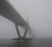 Charleston Fog by jeffreynelsd