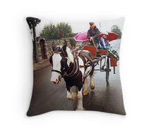 Jaunty cart ride in Limerick........! Throw Pillow