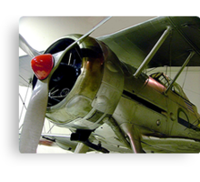 Gloster  Gladiator...........! Canvas Print