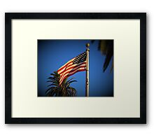 Freedom flag Framed Print