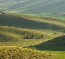 Soothing rolling hills view. by exvivo