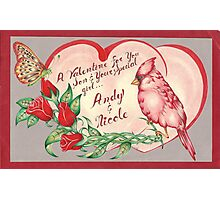 Valentines Cardinal Drawing Photographic Print