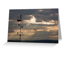Where the wind goes. Greeting Card