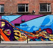 Overlooking the chain of mystery - Dublin by Norman Repacholi