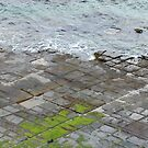 Tesselated Pavement by DEB CAMERON