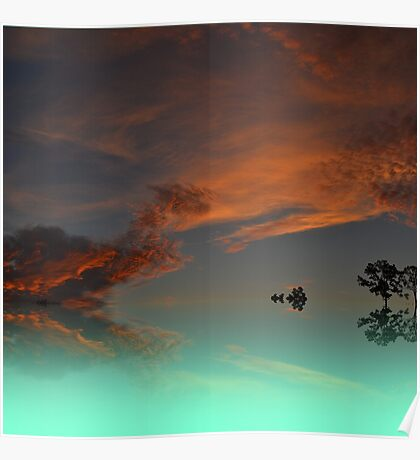 Fine Art Turtle & cat abstract cloud  photo Poster