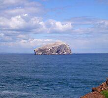 Bass Rock by pantherart