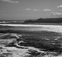 Rough Sea by pantherart
