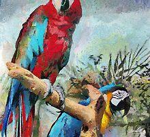 Macaws by PhotosByHealy