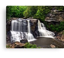 Black Water Falls Canvas Print