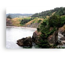 Along The Pacific Ocean Canvas Print