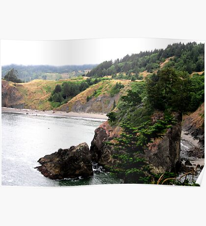 Along The Pacific Ocean Poster