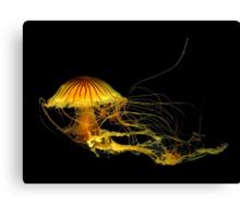 Underwater Art ~ Part Four Canvas Print
